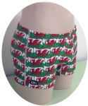 Welsh Dragon Swim Trunks